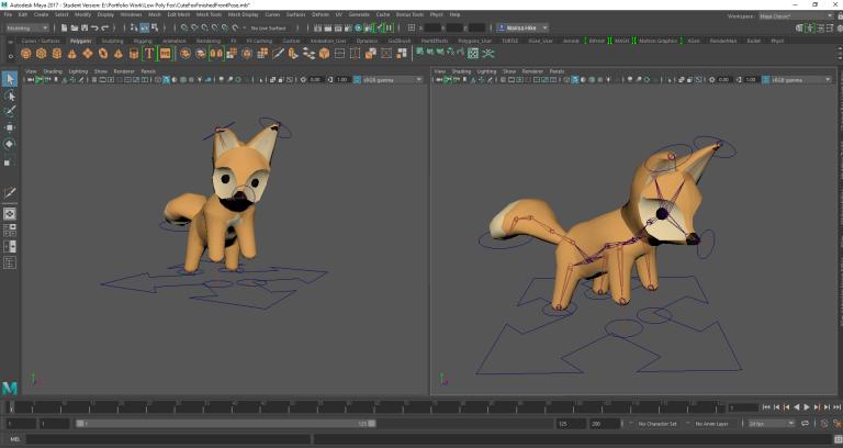 Fox Rig